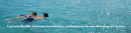 Chromis Consulting Contact Page Banner Image