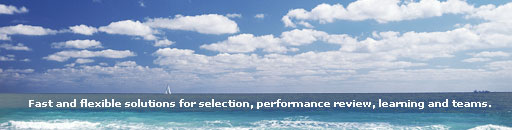 Chromis Consulting Home Page Banner Image
