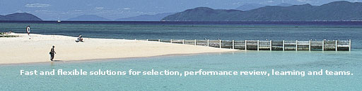 Chromis Consulting Services Page Banner Image